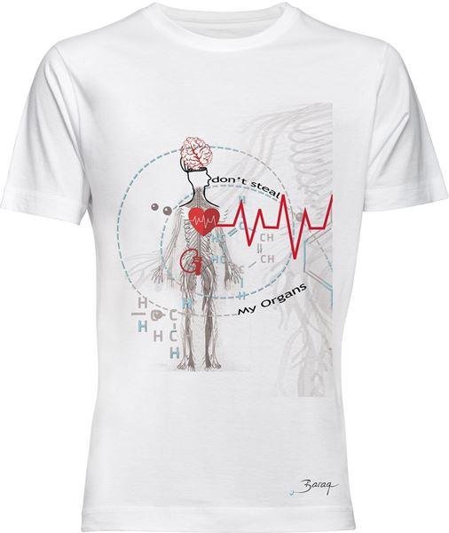 Bild von Organs 2
