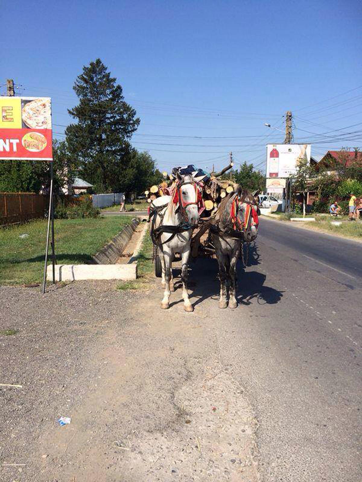 the latest f0da7 f9230 Guten Morgen, Um unsere restlichen Flyer noch verteilen zu können, machte  unser Roma Freund Georg noch eine Tour in Bukarest mit uns, bevor wir nach  Hauser ...